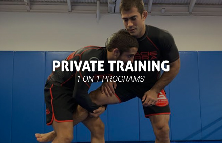 Gracie Barra Huntington Beach Private Training